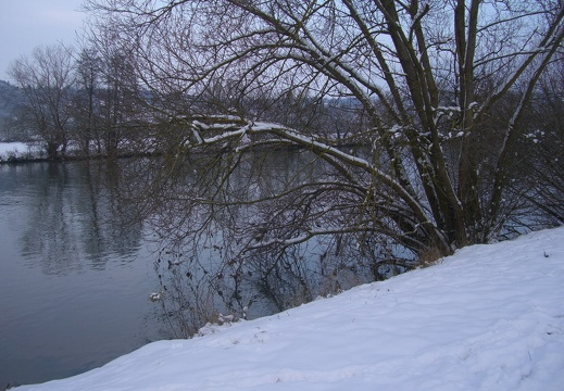 Winter am Neckar